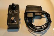 TC ELECTRONIC - LOOPER DITTO plus