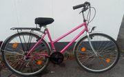 Damenrad-Trekkingrad 28 zoll Rahmenhöhe 52cm