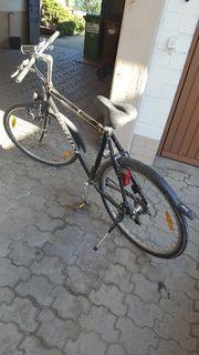herren trakking bike
