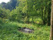 Garten Freizeit Acker Grundstück in