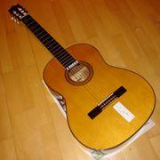 Classic Ibanez Gitarre