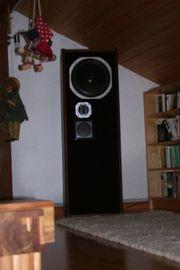 Lautsprecherboxen, Standboxen