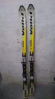 Skier  Damen  Völkl