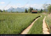 Suche Garten Wiese Feld Wald