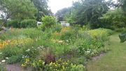 Pachtgarten