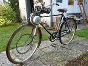 Fahrrad mit Rex