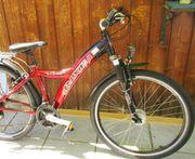 MTB Mountainbike 26 Zoll von