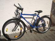 Mountainbike Tokaido Jugendrad
