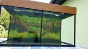 Aquarium 80 x 35 x