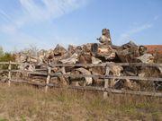 Große Stämme Brennholz kostenlos gegen