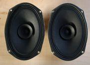 2x Breitband Lautsprecher