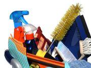 Hockenheim Putzfrau Putzhilfe Haushaltshilfe Reinigungskraft