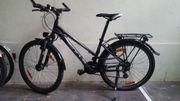Fahrrad BULLS Pulsar