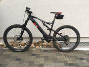 Rotwild Ebike RX