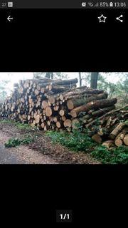 Brennholz Kaminholz Eiche u a