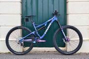 Mountain Bike Pivot