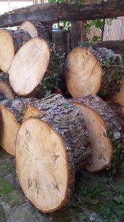 Baumstammabschnitte/Holzscheiben