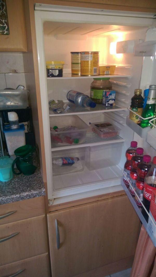 Einbau Kühlschrank Gorenje in Norderstedt - Kühl- und ...
