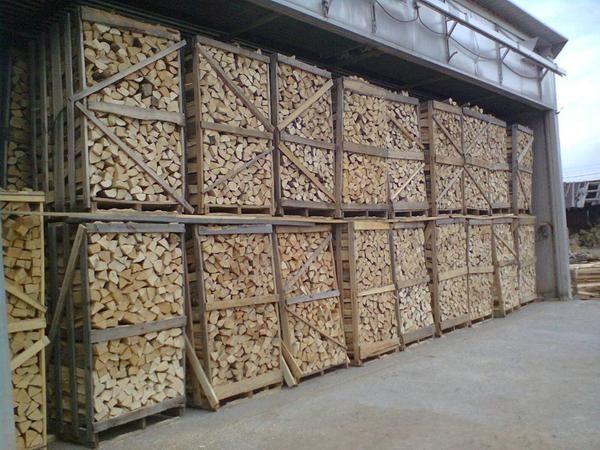Brennholz Feuchtigkeit Ca 10 Ideal Fur Winter 2018 2019 In