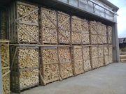 Brennholz Feuchtigkeit ca 10 ideal