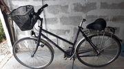 City Damen Fahrrad