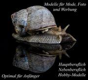 Foto Jobs für Foto Modelle