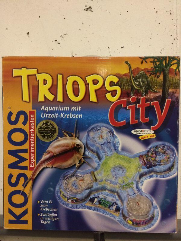 TRIOPS City Von Kosmos