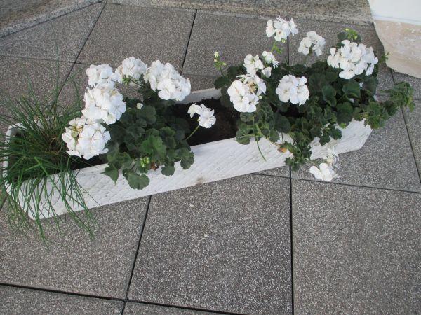 Sehr stabiler Blumenkasten » Sonstiges für den Garten, Balkon, Terrasse