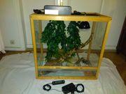 Terrarium Glas mit Holzrahmen 80x80x45cm
