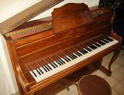 Klavier Sauter mit