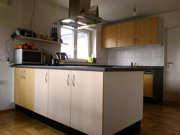 ikea kuche gebraucht kaufen nur 2 st bis 60 g nstiger. Black Bedroom Furniture Sets. Home Design Ideas