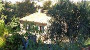 Italien Mieter für romantisches Landhaus