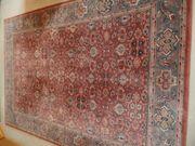 Schöner Paladin - Teppich neu 2490
