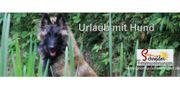 Ferienwohnung Görlitz Urlaub mit Hund