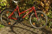 Moutainbike top Zustand