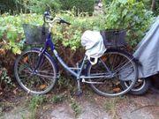 Ein Pegasus Fahrrad,