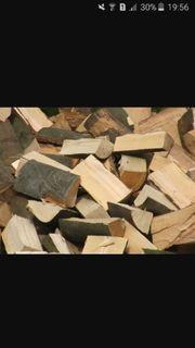 Brennholz Buche abgelagert