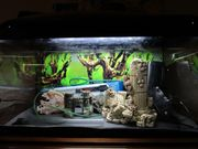 Aquarium 60 L,