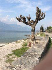 Ferienwohnung Gardasee 2-