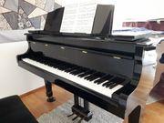 Professioneller Klavierunterricht in angenehmer Atmosphäre