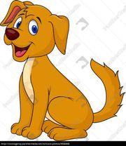 Biete Hundesitter